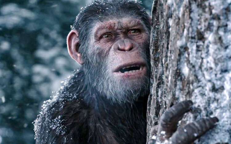 War-for-the-Planet-of-the-Apes-3046-6173