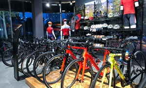 Khai trương showroom Trisport International